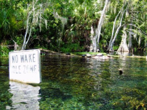 No Wake Silver River State Park
