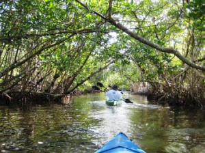 Commodore Canoe Trail, Sanibel, Fla.