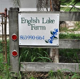 English Lake Farm, U-Pick Farm in Southwest Florida