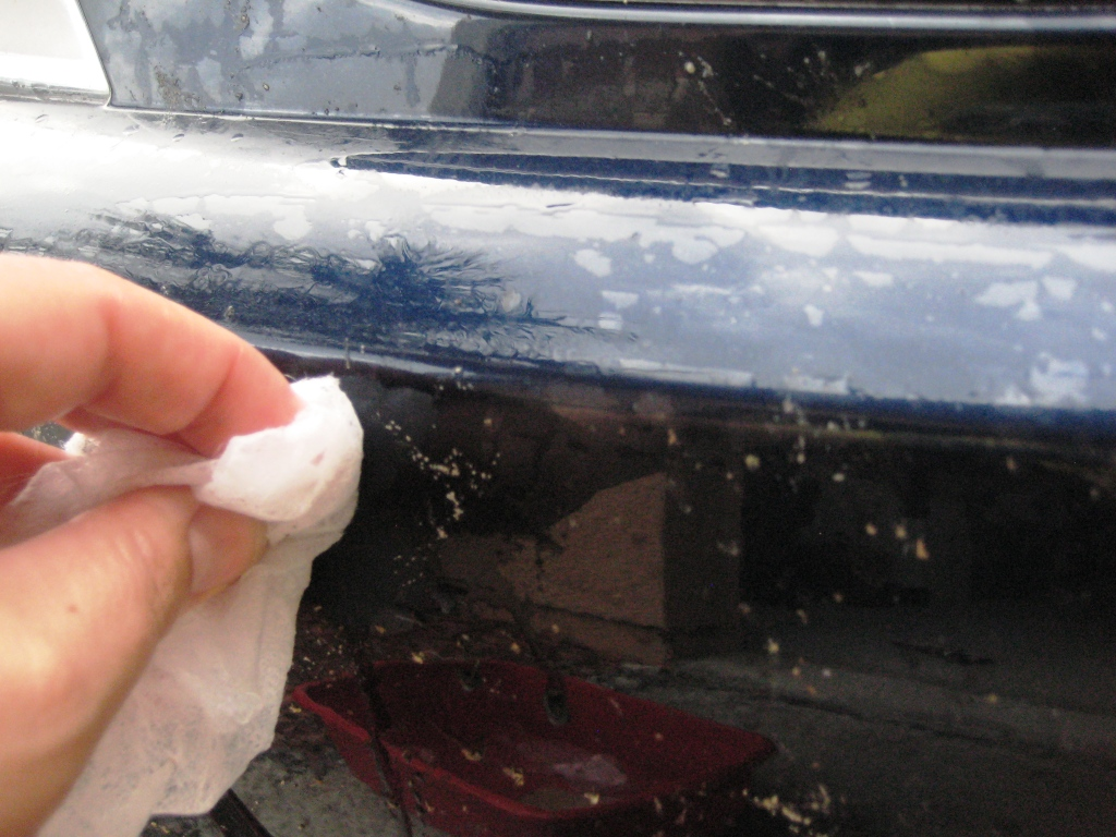 Using a Wet Bounce Dryer Sheet to Remove Lovebugs from My Car