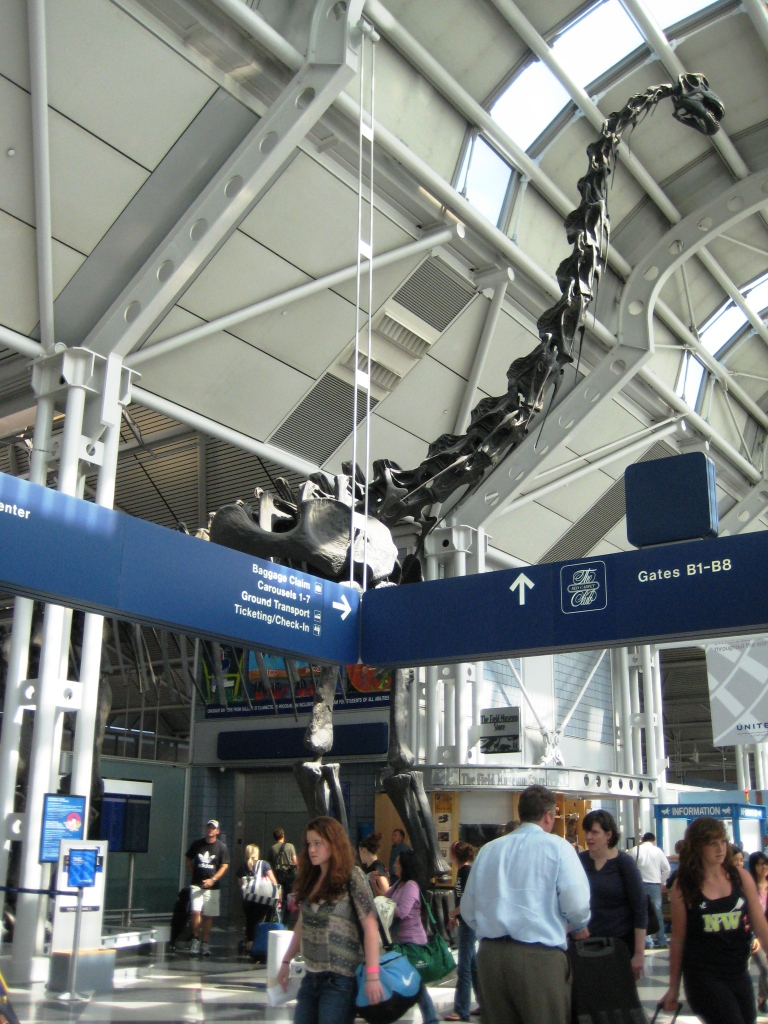 Dino at Chicago O'Hare International Airport