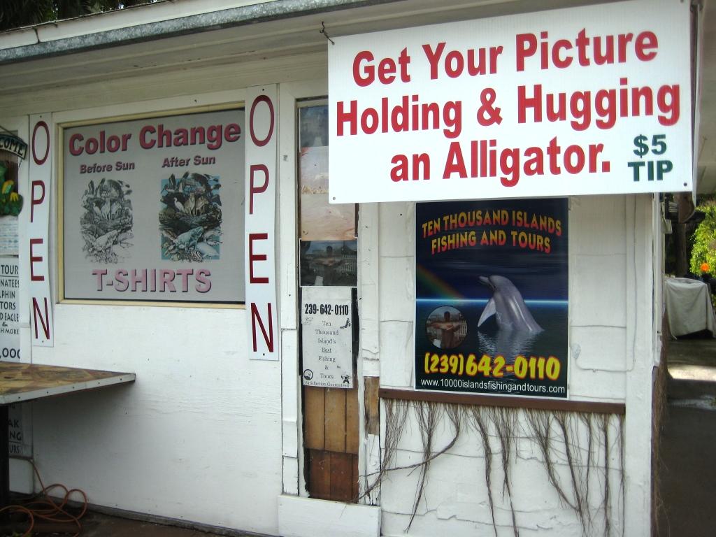 Alligator Hugging in Naples, Fla.