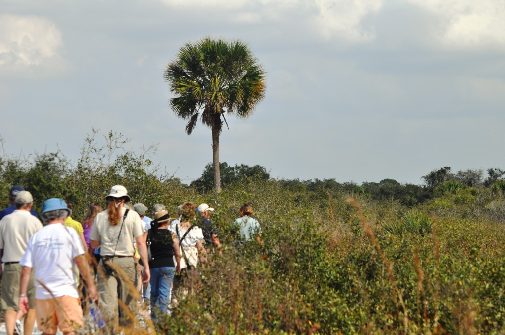 Ranger-Led Walks through Florida Scrub-Jay Habitat Were Offered throughout the Day