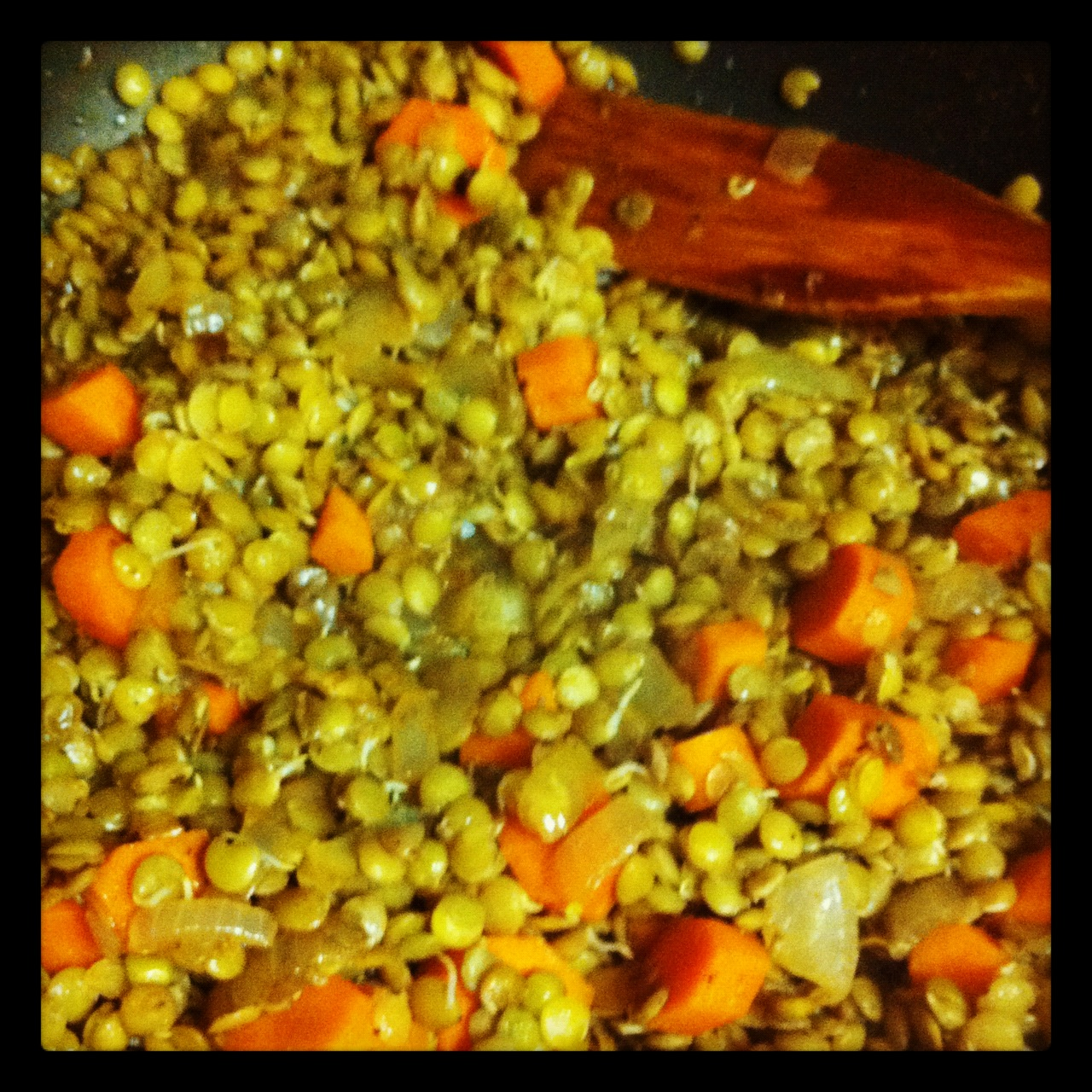 What's for Dinner? Lentil Sprout Saute