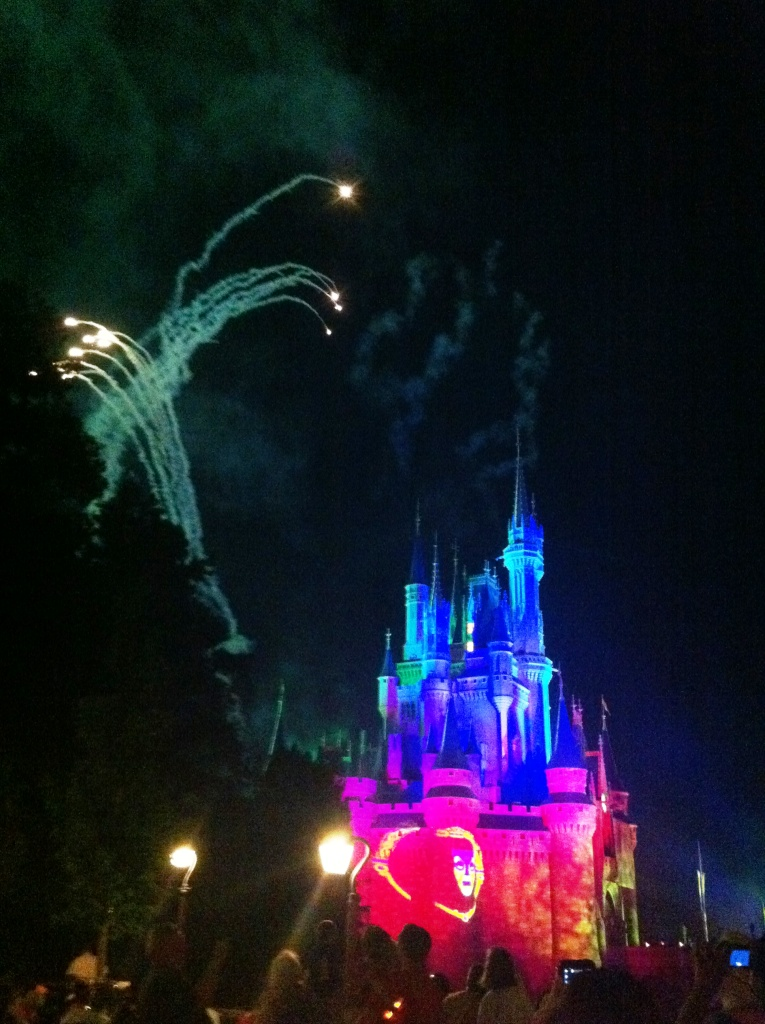Cinderella's Castle During the Fireworks Show, Magic Kingdom