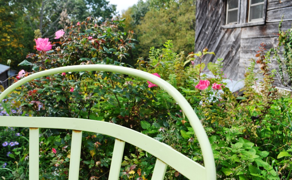Mountain Farm in Burnsville, N.C., is Full of Beauty at Every Turn
