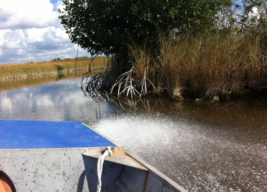 Whee! Zipping through the Florida Everglades with Wooten's
