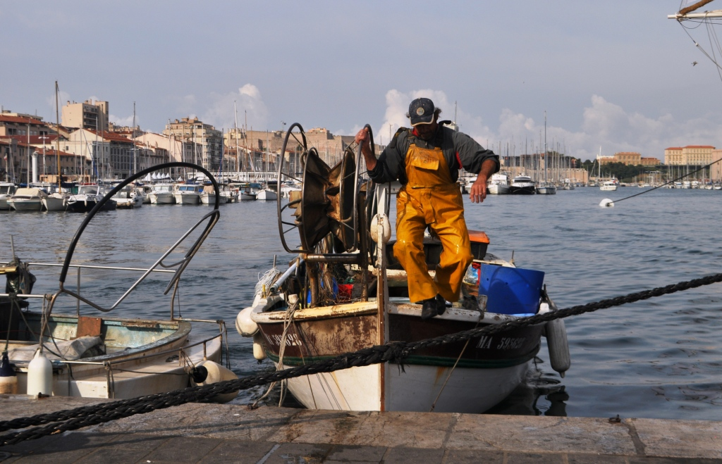 Travel to France: A Fisherman Brings in His Fresh Catch from the Mediterranean into Marseille's Port.