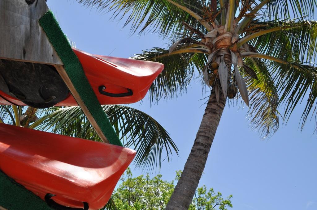 South Florida Kayaks