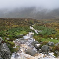 Day Trip from Dublin: The Wild Wicklow Tour is a Must