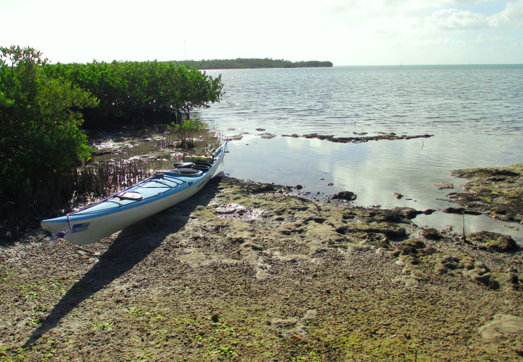 A Burnham Guides Sea Kayak is Ready to Paddle the Florida Keys from Knight's RV Resort & Marina