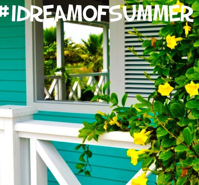 #IDreamofSummer in Cooler Climes