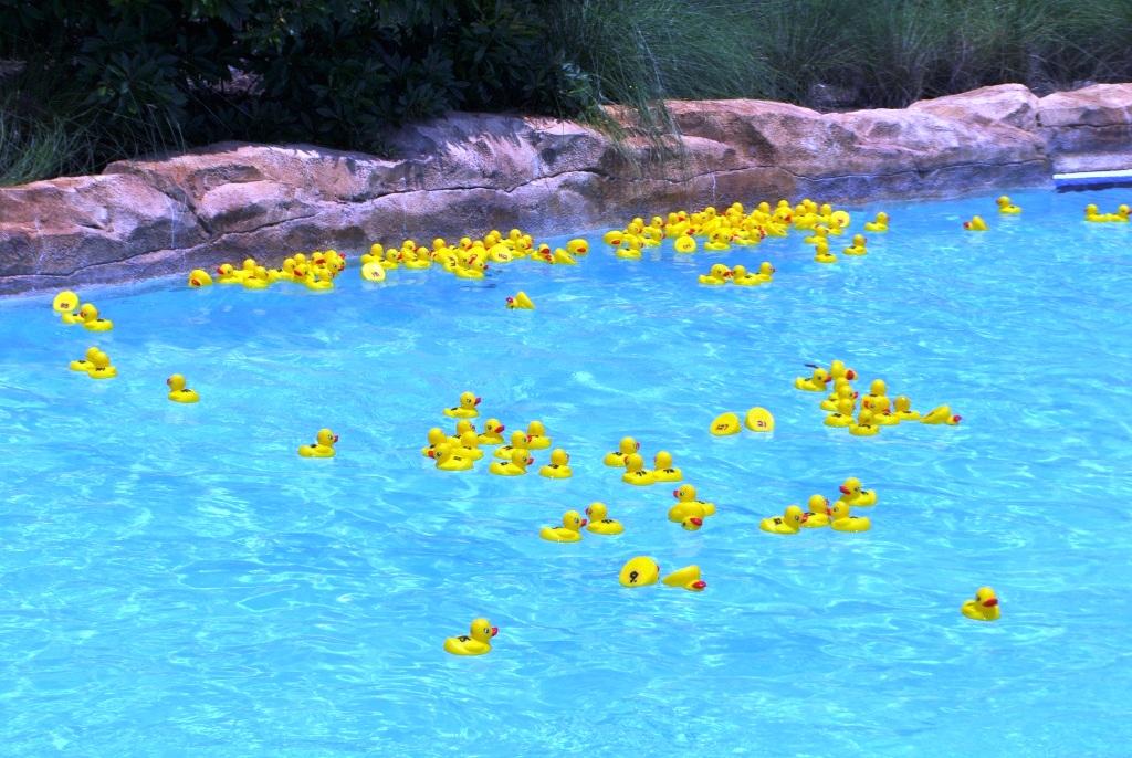 Saturdays during SummerBlast! at the Hilton Bonnet Creek, Participate in Ducktona 500 - The Great Summer Blast! Duck Race