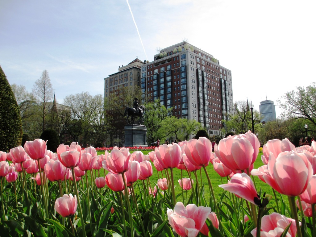 Boston is Gorgeous in Springtime. The City Hosted AARP Life@50+ in May 2014.