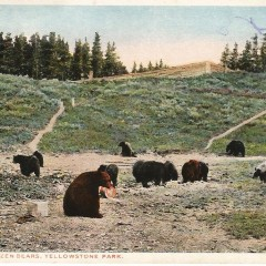 Will Sending My Elected Officials Postcards from State & National Parks Make a Differnce?
