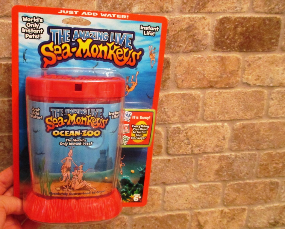 The Amazing Live Sea Monkey's Ocean Zoo