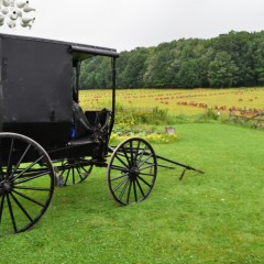 Up Close and Personal with the Amish on New York's Amish Trail