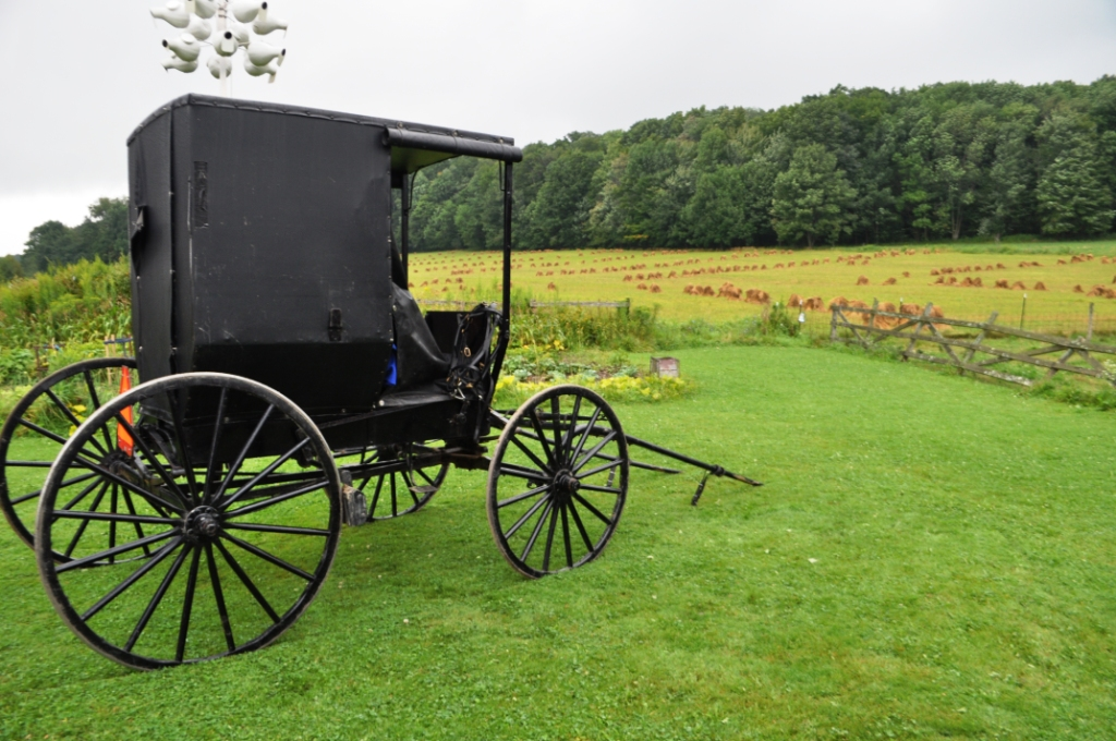An Amish Buggy, Cattaraugus County, N.Y.