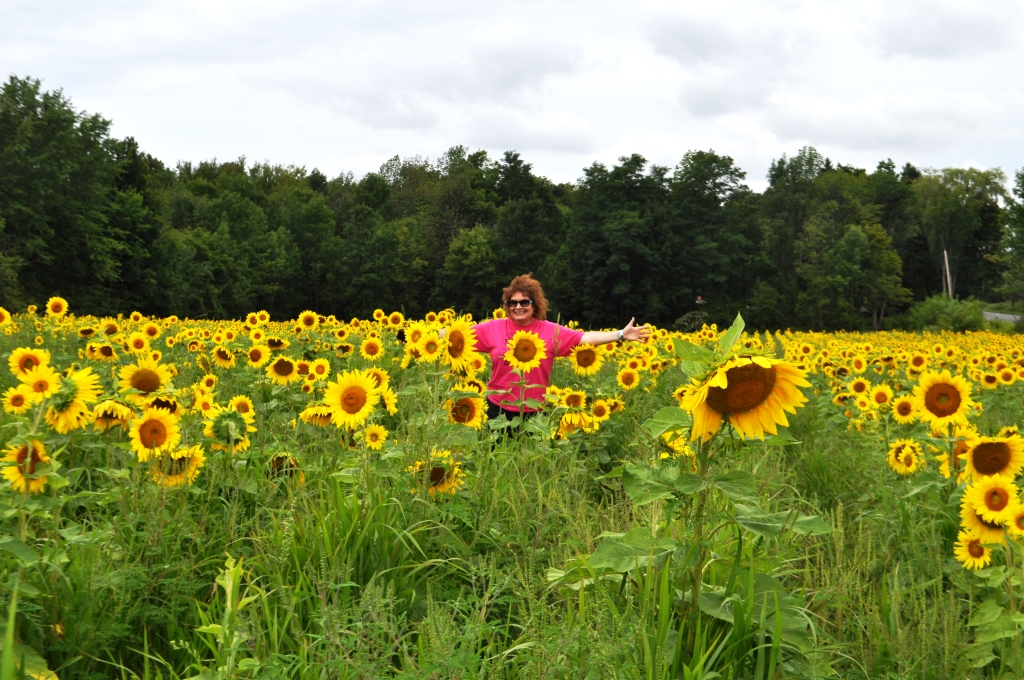 Me Dancing in a Sunflower Field During My Vacation to Buffalo, N.Y., Aug. 2014