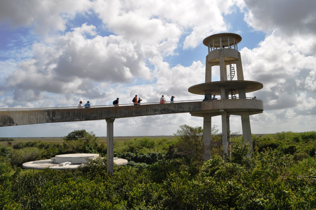 Shark Valley's 45-Foot High Observation Tower. On A Clear Day You Can See 20 Miles Out Over The Everglades.
