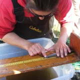 Here Fishy, Fishy. Juvenile Tarpon Monitoring at Wildflower Preserve