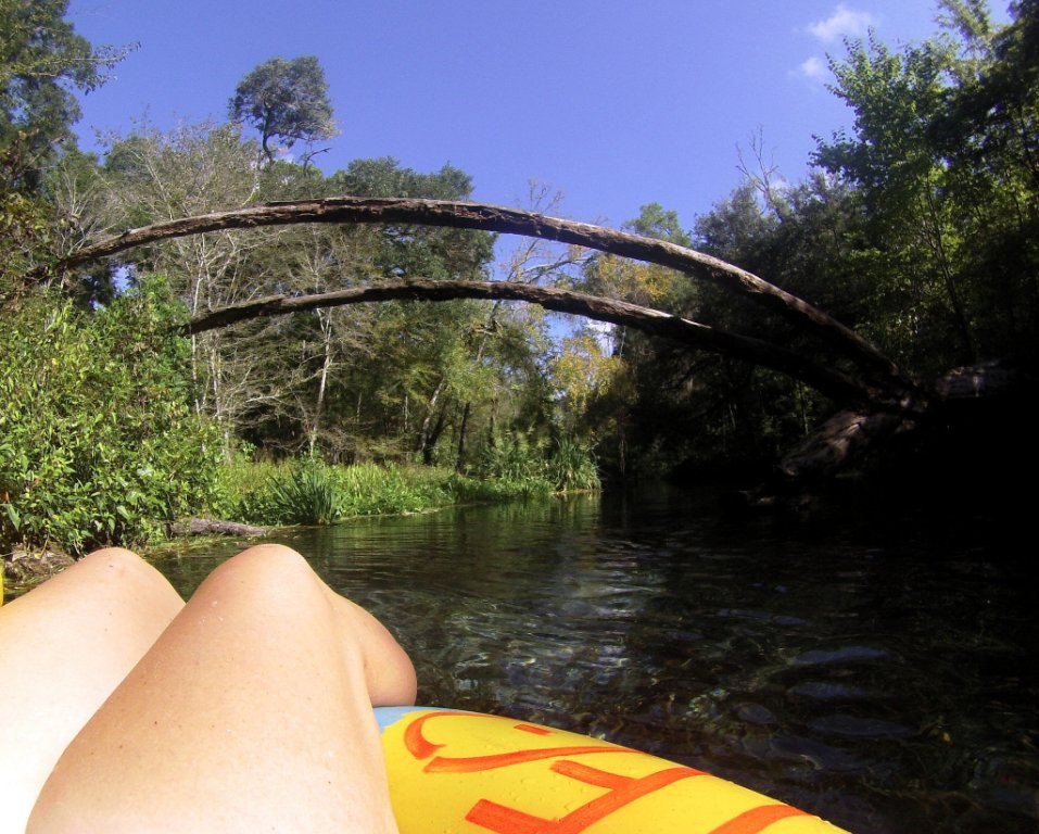 Floating the Clear, Cool Waters of the Ichetucknee River in Fort White, Florida