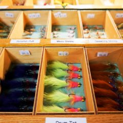 Outdoorswoman Journal: Learning Fly Casting in Port Charlotte, Florida