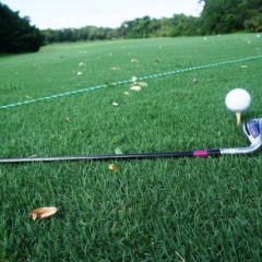 What's New in Florida Golf for 2019