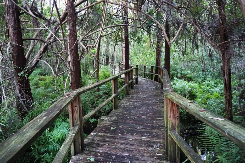 Find Serenity at Innisbrook Resort, Palm Harbor, Florida.