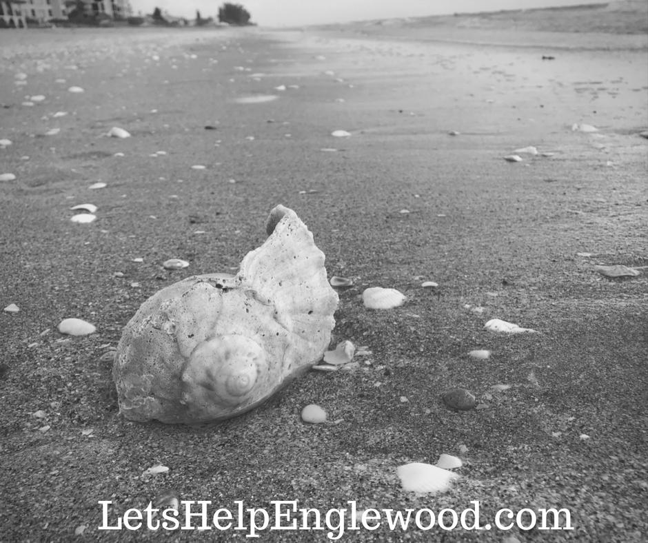 LetsHelpEnglewood.com