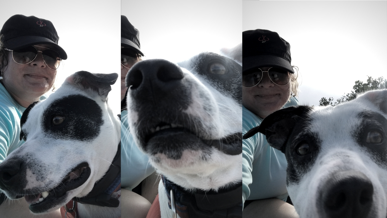 Selfies with #LoveRadcliffDog While Fishing in Daytona Beach, Fla., July 2017