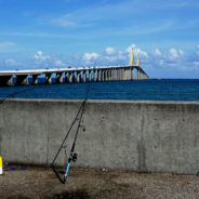 Outdoorswoman Journal: Southwest Florida Fishing Resources for Female Anglers