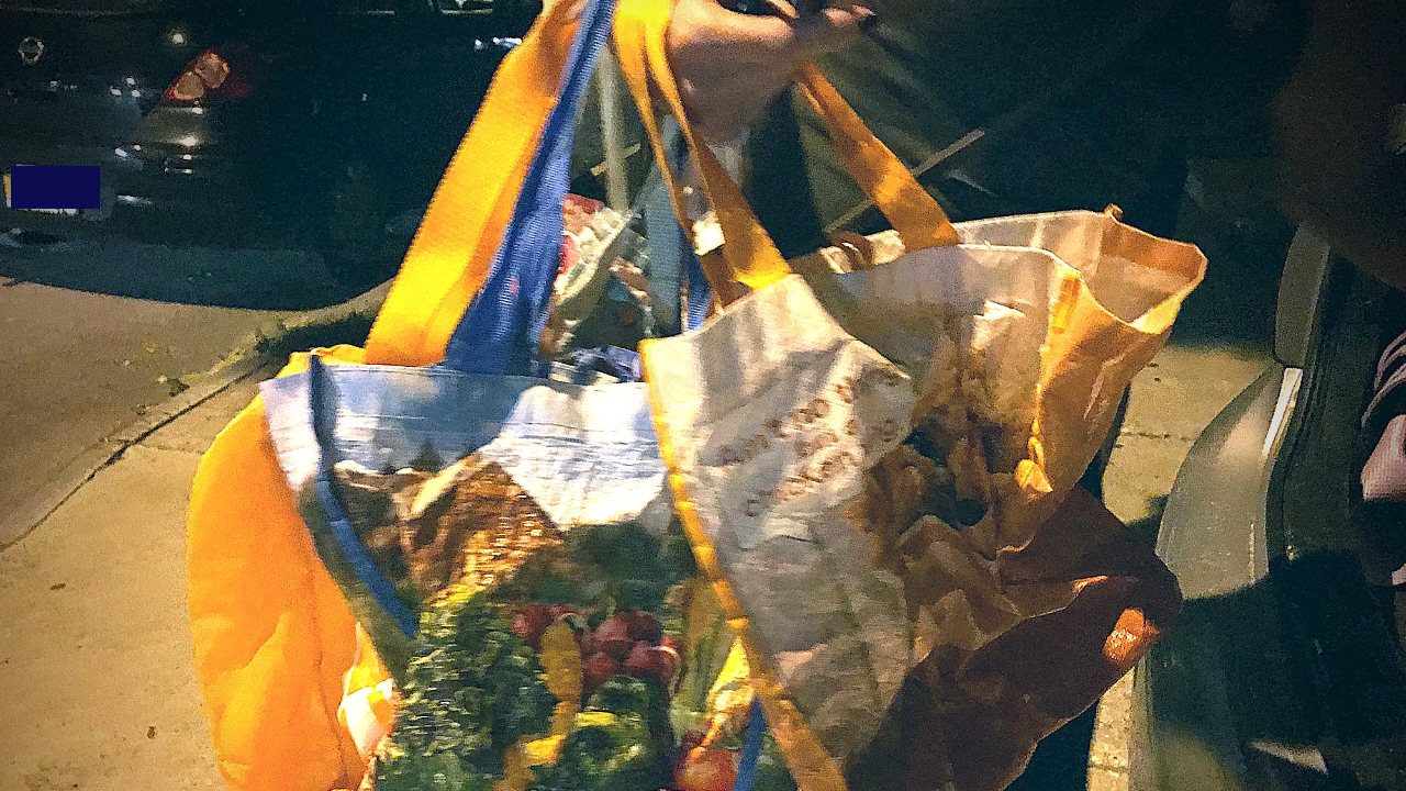 Bags Are A Key Resource to Have While Canning in Buffalo and Anywhere.