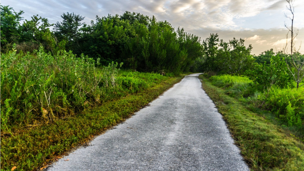 Guy Bradley Trail in Flamingo, Everglades National Park, Fla., Nov. 2018