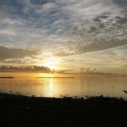 2018: Yes, Flamingo is Open in Everglades National Park