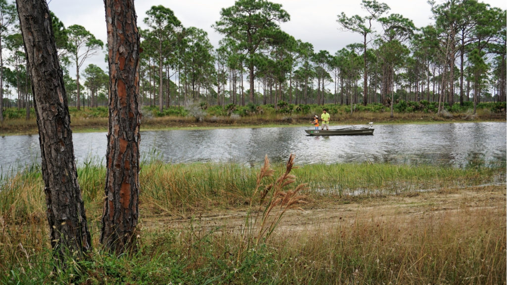 Enjoy the Great Outdoors at Babcock/Webb Wildlife Management Area in Punta Gorda, Fla.