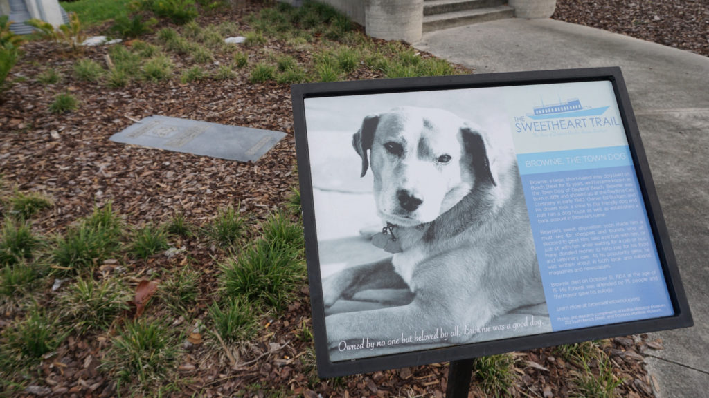 Daytona Beach's Brownie the Town Dog Passed in Nov. 1954 and His Grave is  on the Sweetheart Trail in Riverfront Park in Daytona Beach, Fla. Next to His Grave is the Statue Which Was Dedicated June 12, 2018.