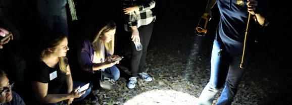 Florida Travel: A Walk in the Dark at Chinsegut Conservation Center in Brooksville