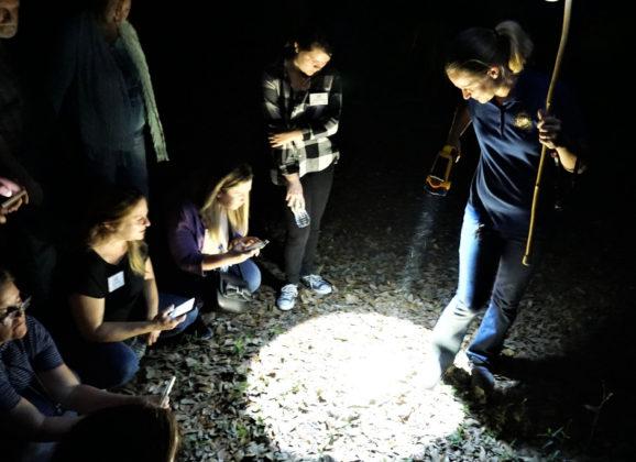 Florida Travel: A Walk in the Dark at Chinsegut Conservation Center in Brooksville