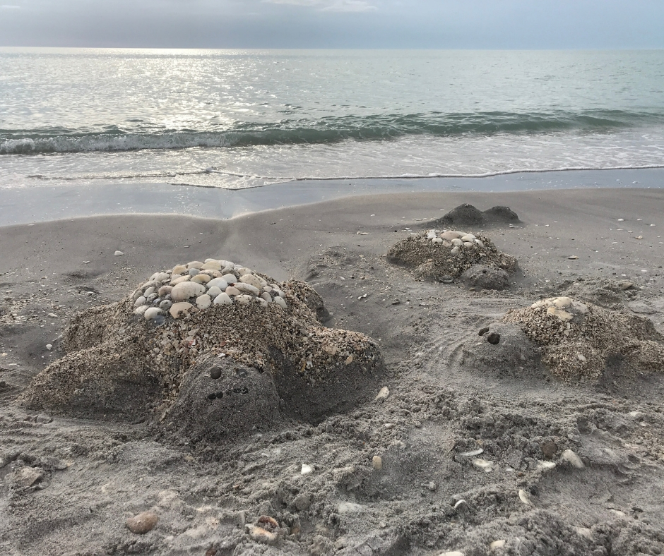 Florida's Water Quality Impacts Everyone
