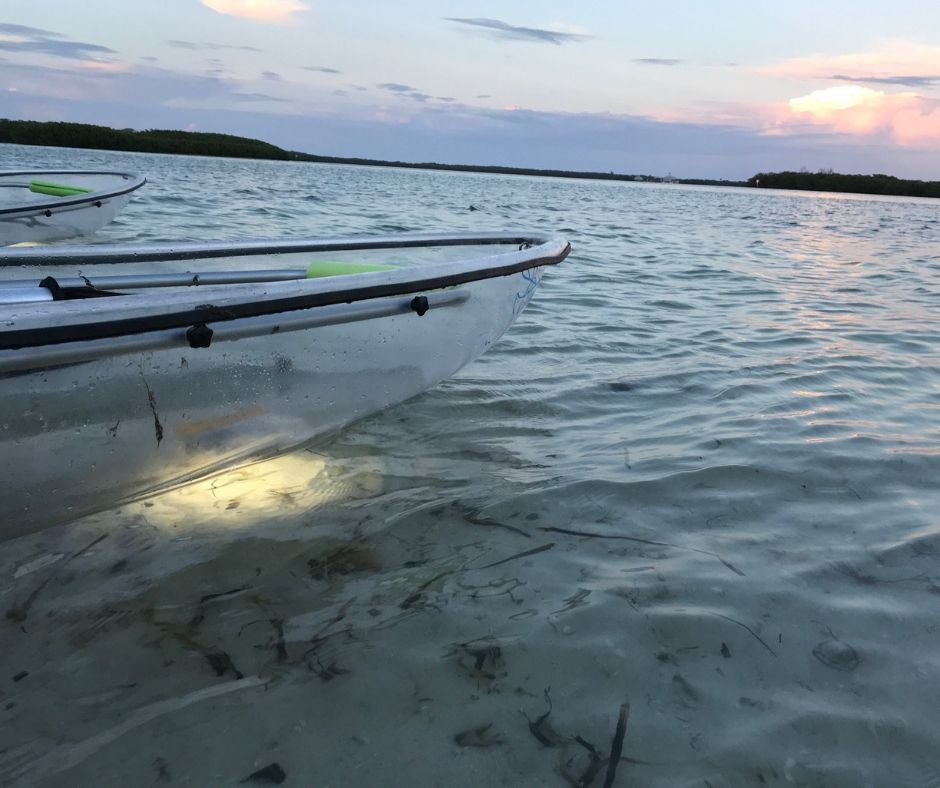 A Clear Kayak with Island Ferry Eco Tours with Lights.