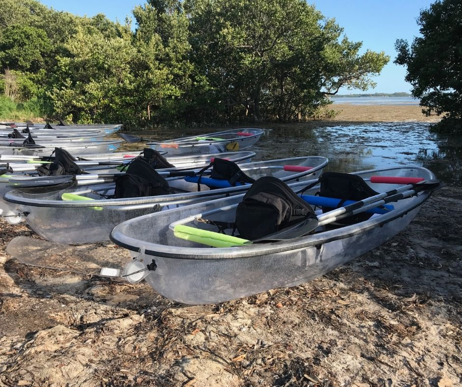 Island Ferry Eco Tours Uses Clear Kayak Company Boats.