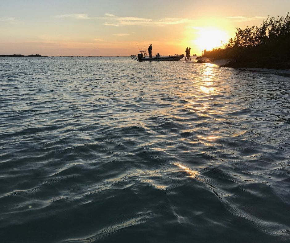 Sunset in Shell Key Preserve, Tierra Verde, Fla.