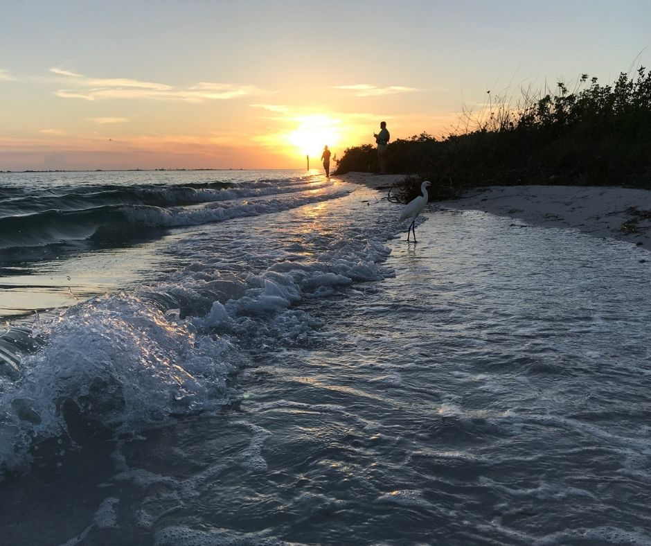 A Gorgeous Sunset in Shell Key Preserve in Tierra Verde, Fla.