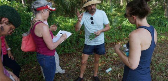 Nibbling Florida's Wild Edibles with Green Deane
