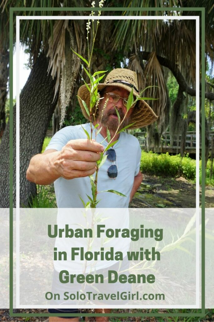 Pin It! Urban Foraging in Florida with Green Deane on SoloTravelGirl.com.