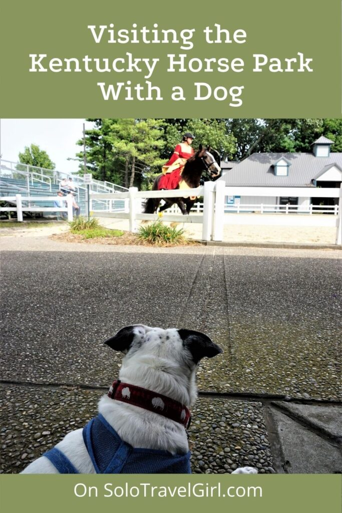 Pin It! Visiting the Kentucky Horse Park with a Dog