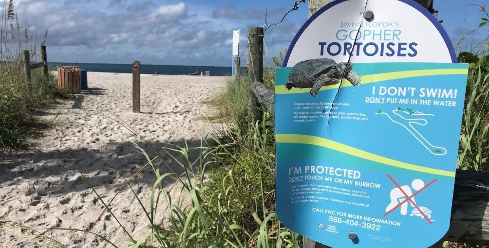Save Florida's Gopher Tortoises! Sign.