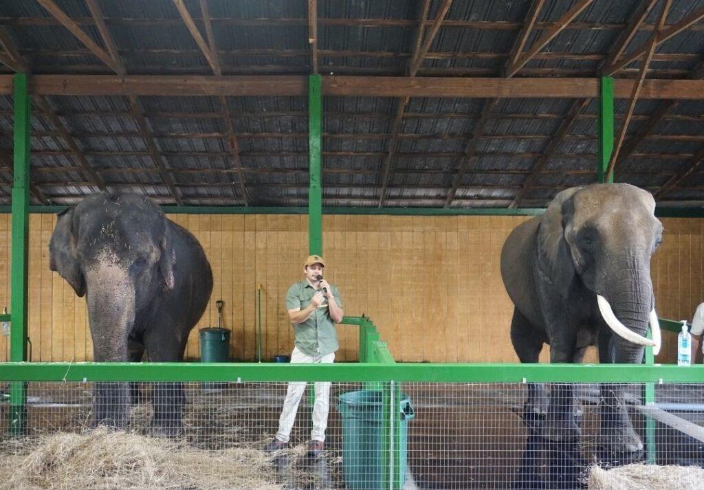 Carol, Lou, and Lou at Myakka Elephant Ranch.