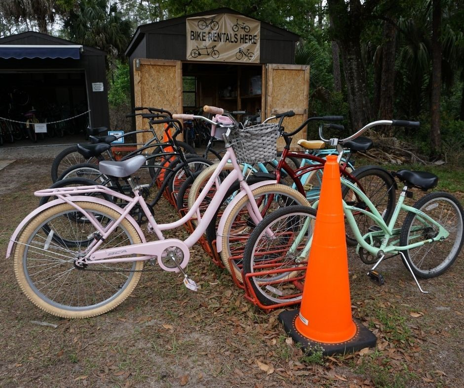 Some of the Bicycles Available for Rent from the Hammock Inn in Highlands Hammock State Park Sebring, Fla.